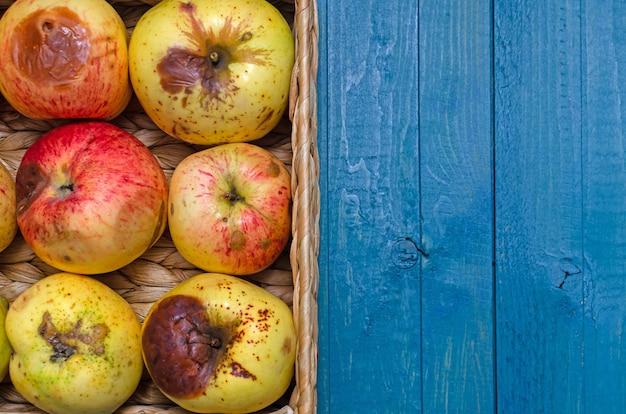 Cesta de vime com maçãs feias orgânicas na mesa azul. fechar-se.