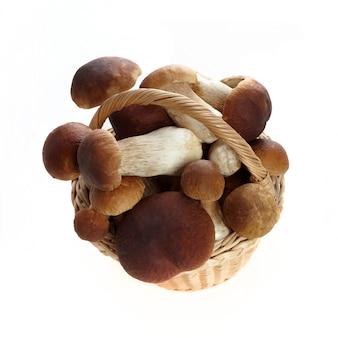 Cesta tola de cogumelos boletus isolados no fundo branco. alimentação vegetariana saudável. fundo de comida saudável.