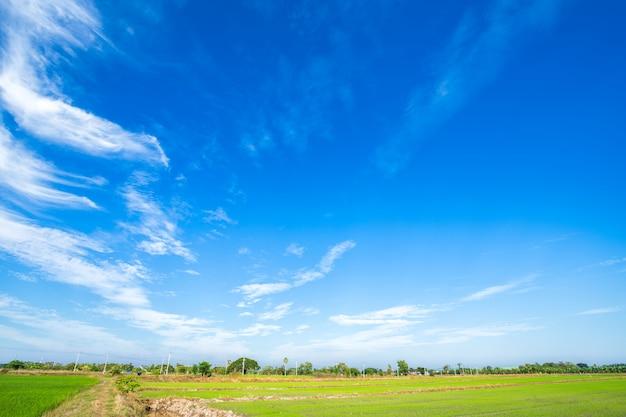 Céu azul com nuvens brancas.