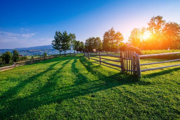 Céu azul com um belo prado