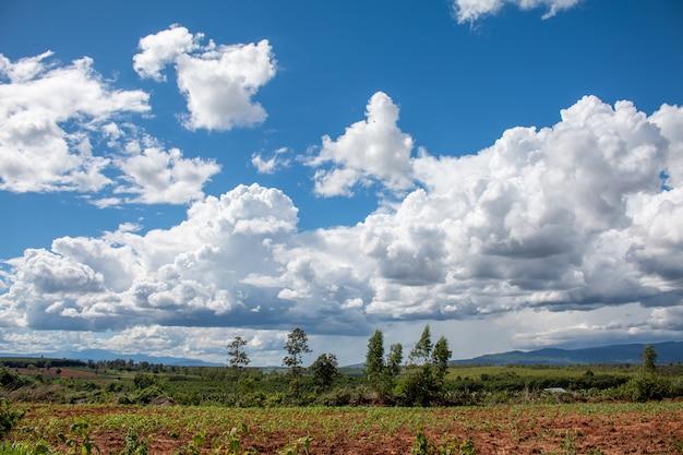 Céu azul de paisagem com nuvens brancas durante o dia sobre a natureza da terra de agricultura