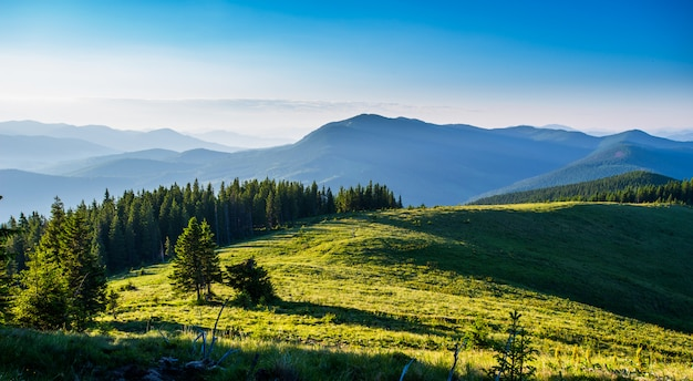 Céu azul e colinas verdes.