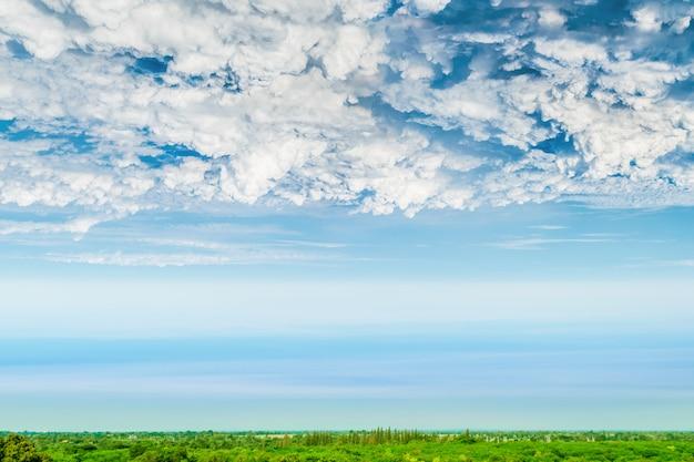 Céu azul e nuvem bonita com terra da árvore.