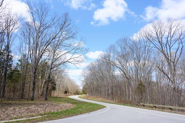 Céu azul lindo dia com estrada curva e árvores no caminho lateral,