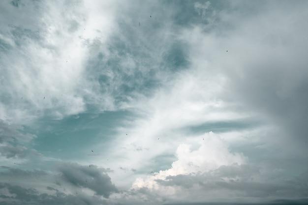 Céu claro com nuvens borradas e pássaros voando alto.