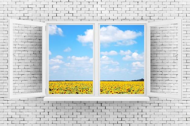Céu com campo de girassóis, visto pela janela branca na parede de tijolos closeup extrema renderização em 3d