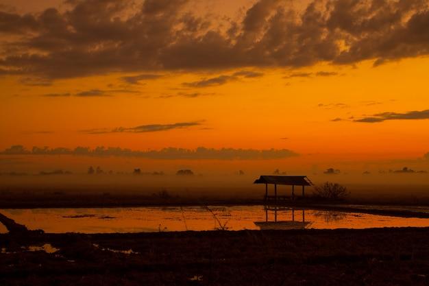 Céu de manhã com água nos campos no norte da tailândia