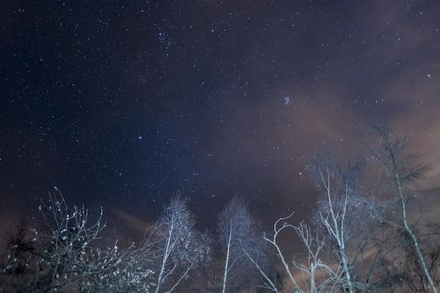 Céu estrelado com capella e as plêiades dos alpes
