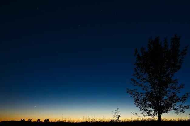 Céu estrelado de noite escura contra o fundo do horizonte crepuscular antes do amanhecer