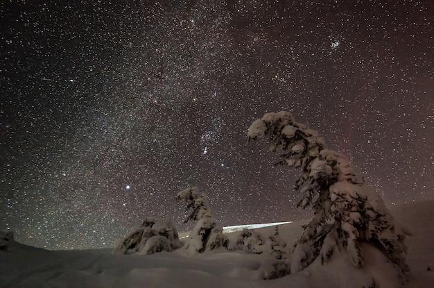 Céu estrelado encantador se espalha sobre um esqui calmo de inverno