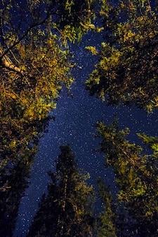 Céu noturno nas montanhas, via láctea
