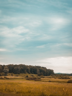 Céu nublado acima das colinas com grama seca em uma área rural