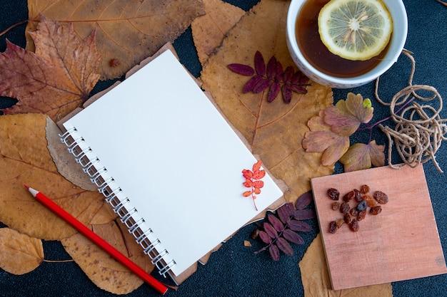 Chá, bloco de notas e folhas de outono