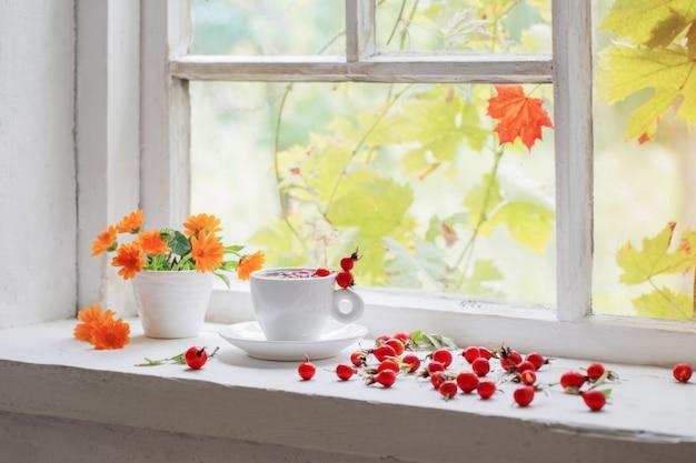 Chá com bagas de uma rosa brava no peitoril da janela