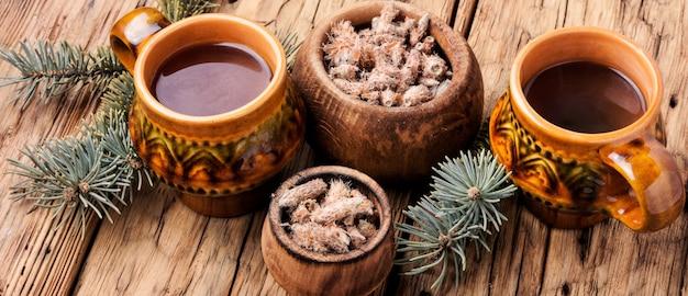Chá com brotos de pinheiro