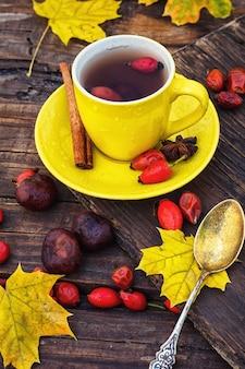 Chá com frutas de cachorro-rosa