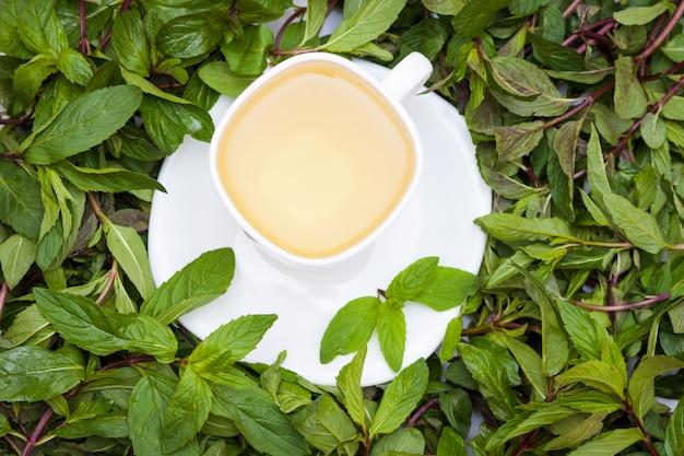 Chá de ervas com hortelã fresca entre folhas de hortelã fresca