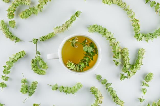 Chá de ervas em um copo com folhas planas leigos em um branco