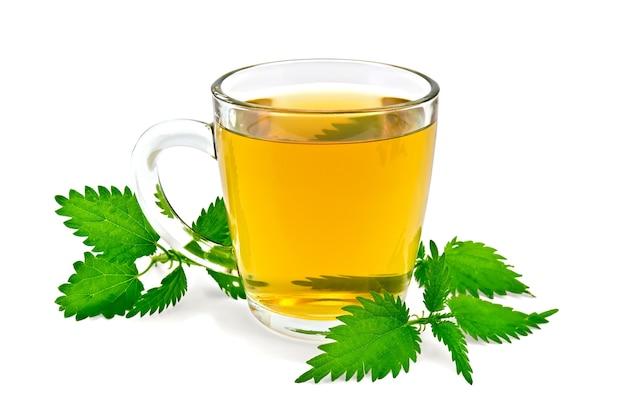 Chá de ervas em uma caneca de vidro, três galhos de urtiga isolada em um fundo branco
