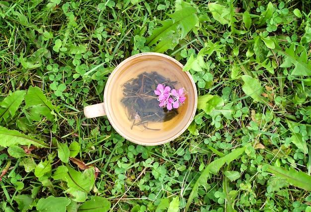 Chá de ervas naturais com flores roxas frescas de fireweed medicinal e folhas em copo de cerâmica na grama verde de verão.
