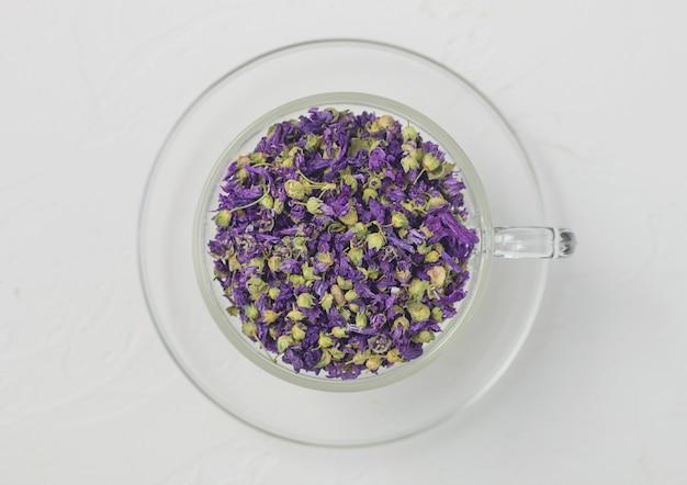 Chá de flores de malva azul em copo de vidro transparente sobre fundo branco. vista do topo