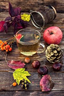 Chá do outono