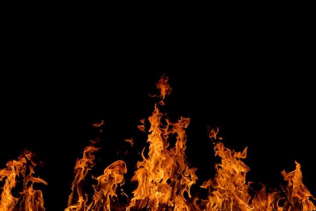 Chama ardente do fogo no fundo preto.