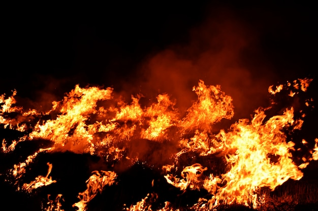 Chama de fogo no fundo abstrato de escuridão