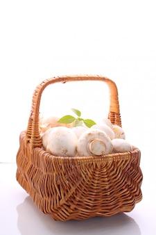 Champignon de cogumelos em uma cesta