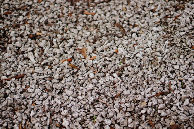 Chão coberto de pequenas pedras sob a luz do sol com um fundo desfocado