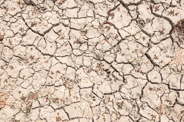 Chão rachado pela seca