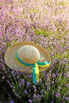 Chapéu de mulher no campo de lavanda no pôr do sol