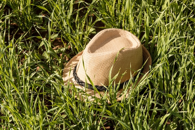 Chapéu de palha sol na grama. verão.