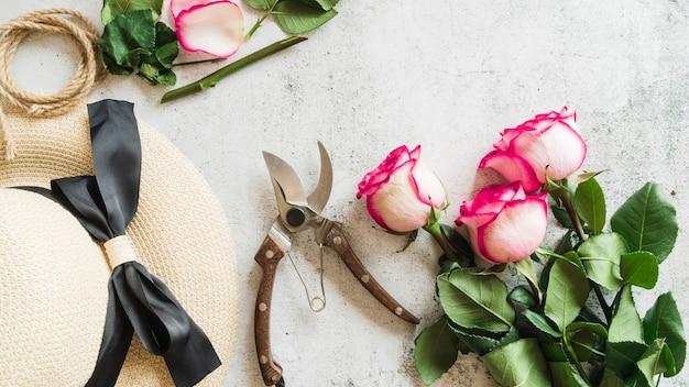 Chapéu de palha; tesouras de podar e galhos de rosas em pano de fundo concreto