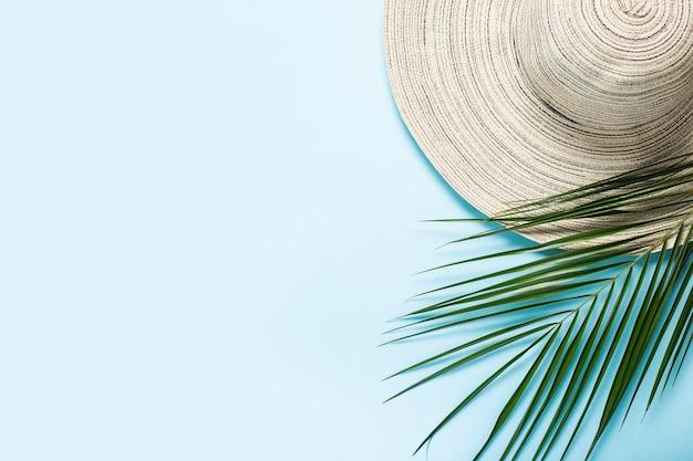 Chapéu feminino com aba larga e um galho de uma palmeira sobre um fundo azul.