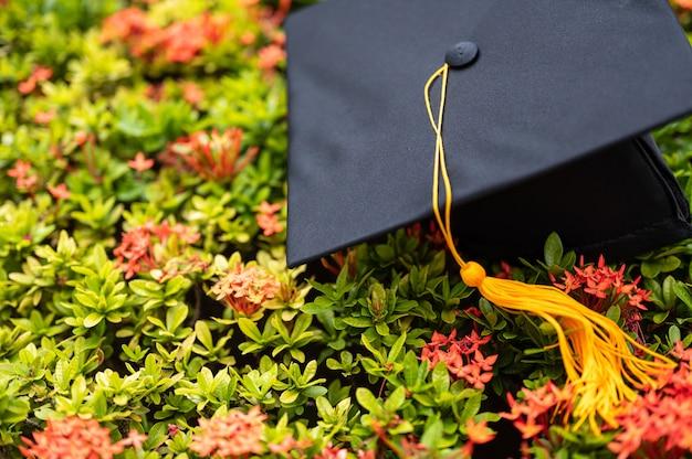 Chapéu preto da graduação colocado na flor do ponto