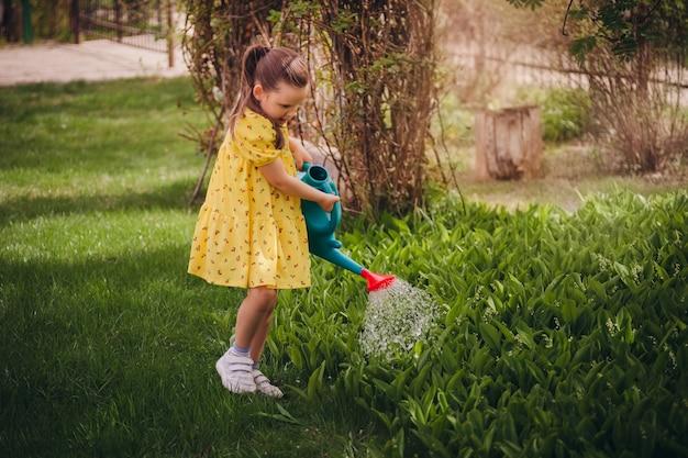 Charmosa garota de seis anos em um vestido amarelo regando lírios do vale de um regador azul ...