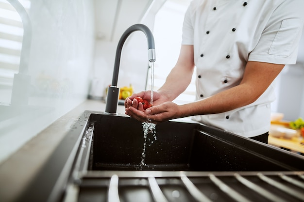 Chef caucasiano lavando tomate cereja na pia da cozinha.