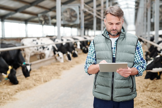 Chefe maduro e confiante de uma grande casa de fazenda moderna com touchpad em busca de novos equipamentos de trabalho na rede