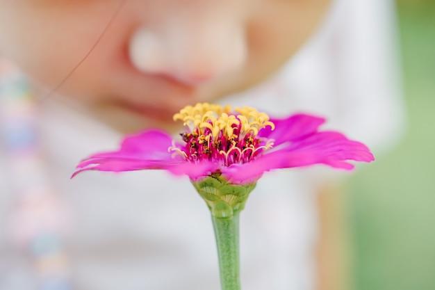 Cheire sensorialmente aprendendo com a flor linda criança asiática explorando o ambiente natural