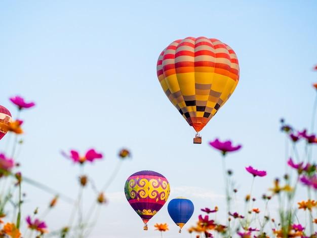 Chiangrai tailândia - 13 de fevereiro de 2019: singha park chiangrai international balloon fiesta 2019 no singha park, chiang rai, tailândia.