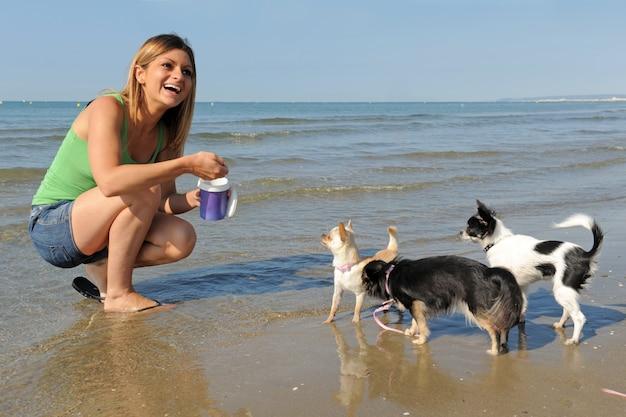 Chihuahuas e mulher na praia