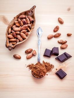 Chocolate em pó e grãos de cacau torrados
