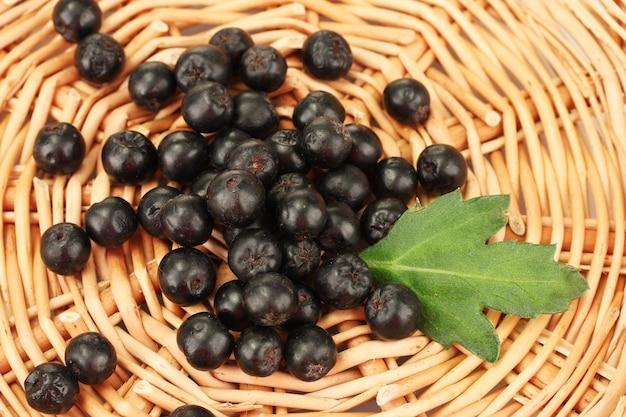 Chokeberry com folha verde em tapete de vime