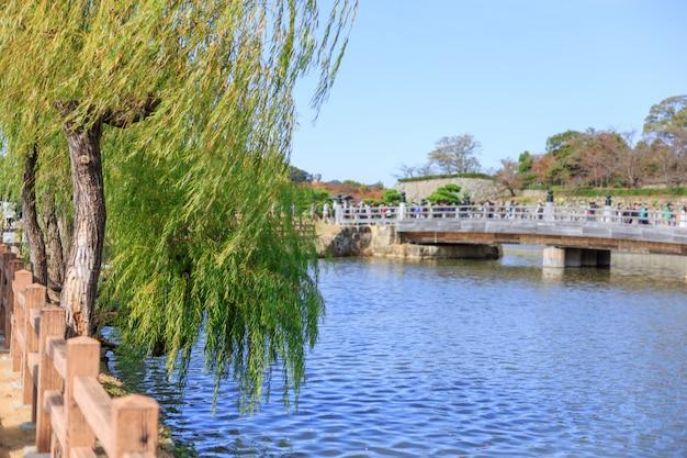 Chorando a árvore de salgueiro com o rio, parte dianteira da ponte da rua de japão do castelo de himeji.