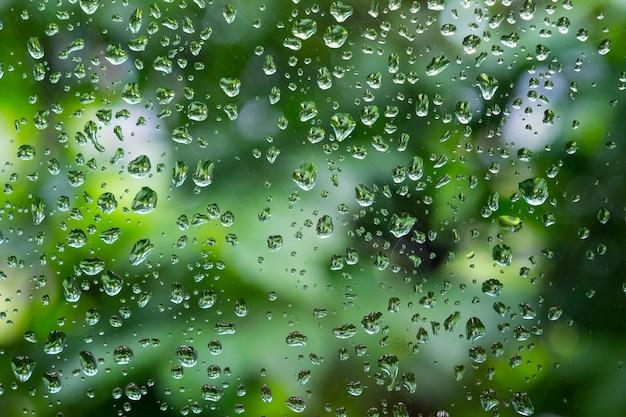 Chova gotas na janela com a árvore verde borrada sobre.