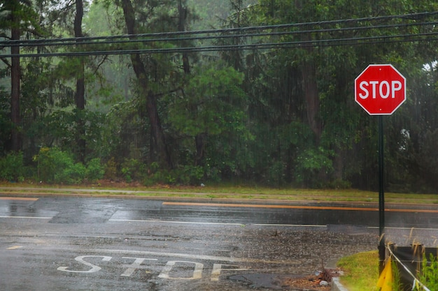 Chuva cai na água, chuva no asfalto ou asfalto estrada criando ondulações,