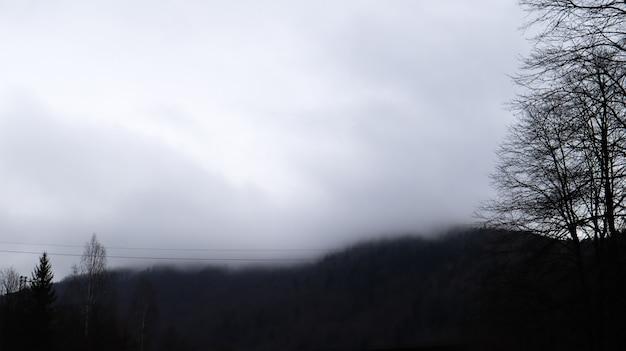 Chuva de outono e nevoeiro nas colinas de montanha. floresta de outono enevoada coberta por nuvens baixas. ucrânia. árvores da floresta de abetos nas colinas de montanhas, atravessando a névoa da manhã sobre as paisagens de outono.