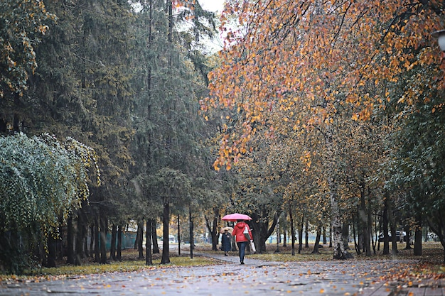 Chuva de outono no parque durante o dia