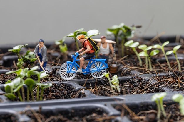 Ciclista de pessoas miniture e jardineiros miniture com plantação de fundo de árvore.